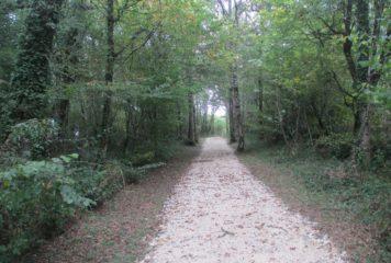Chemins ruraux