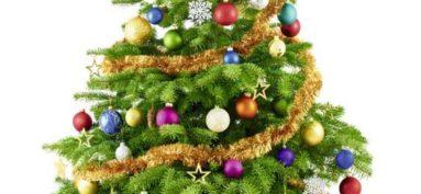 Les fêtes de Noël approchent à grands pas